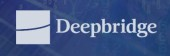 Deepbridge Capital